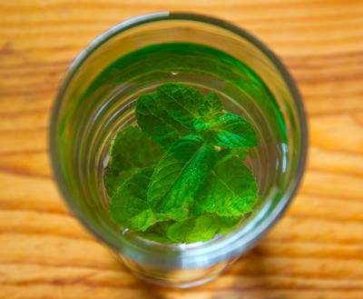Die Top 15 der gesündesten Getränke zum Selbermachen