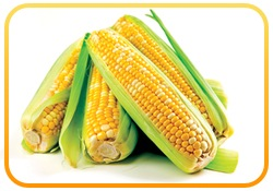 maissirup in welchen lebensmitteln